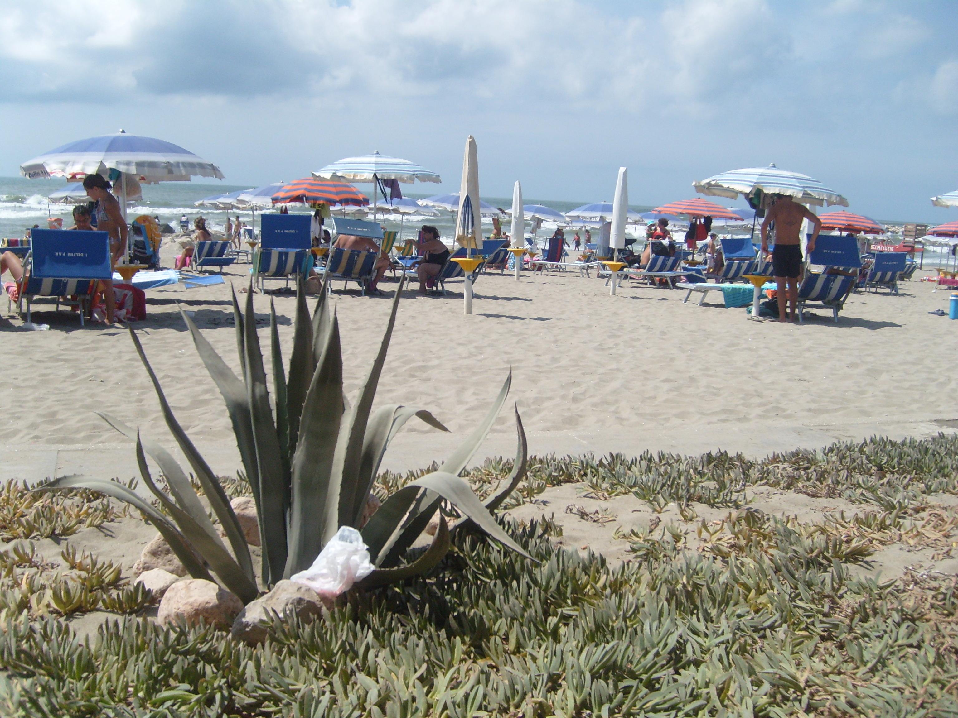 Particolare spiaggia